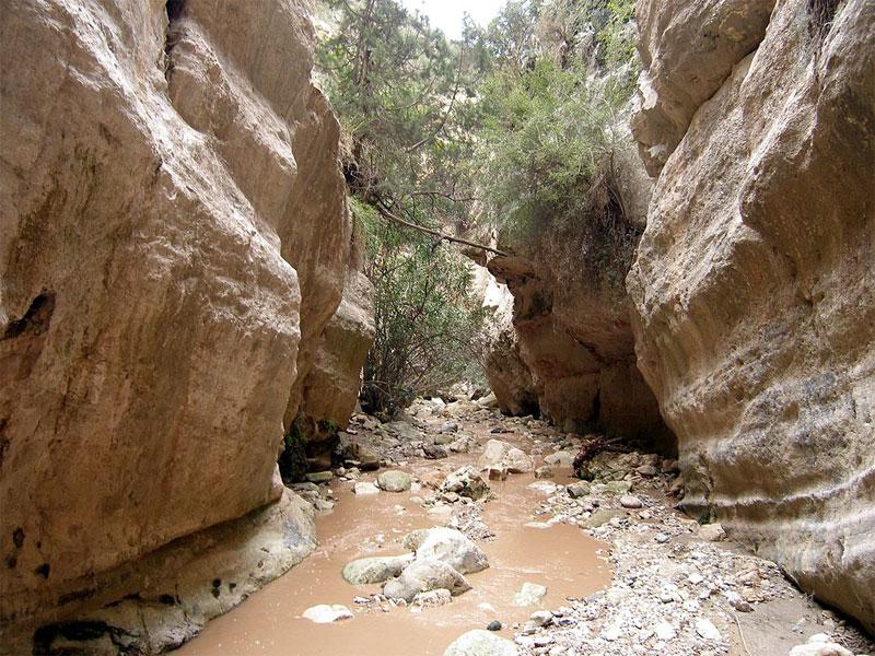 Смыкающиеся скалы ущелья Авакас образуют узкий и длинный коридор
